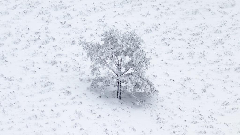 Ajuster l'exposition pour un paysage de neige ou de givre