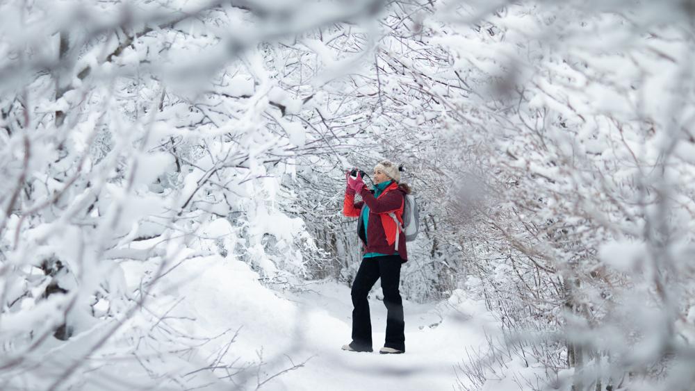 Corriger l'exposition sur la neige et le givre – Exercice photo #24 (niveau débutant)